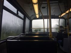 Misty bus tour ride in the jungle like Jurassic park or Jurassic world movie