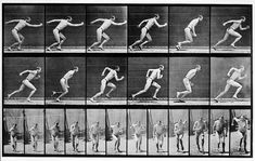 View Animal Locomotion by Eadweard Muybridge on artnet. Browse upcoming and past auction lots by Eadweard Muybridge. Running Pose, Running Man, Figure Reference, Animation Reference, Photo Reference, Drawing Reference, Photo Sequence, Eadweard Muybridge, Burn Out