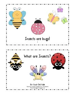 insect book, prek insect