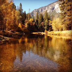 V-Bubbly: A tuga @ Yosemite National Park
