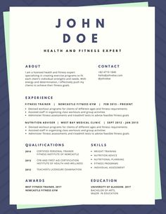 Established Visual Artist Resume  Cv I Logo I Branding I