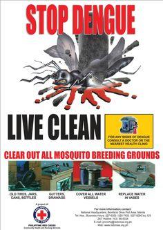 dengue (moustiques, Philippines, 2012)