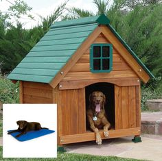 Have to have it. Cedar Dog Cottage with Cooling Bed $246.99