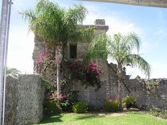 Outside the Tower at the Coral Castle looking North