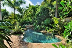 If you want to transform your swimming pool into a tropical movie set, you can't do much better than this design which incorporates the sort of wild vegetation you'd find around a Pacific island lagoon.