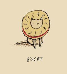 Biscat by Sophie Corrigan