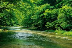 水の演奏に耳を澄ます「養老渓谷トレッキング」