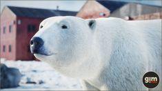 Unreal Engine, Polar Bear, Game Art, Animation, Nature, Animals, Animales, Animaux, Playroom Art