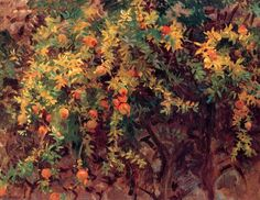 Pomegranates, Majorca, 1908 by John Singer Sargent. Realism. landscape. Private Collection