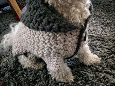Discover more details on puppies. Take a look at our internet site. Crochet Dog Clothes, Cute Dog Clothes, Small Dog Clothes, Big Dogs, Small Dogs, Shih Tzu, Crochet Dog Sweater Free Pattern, Small Dog Sweaters, Pull Crochet