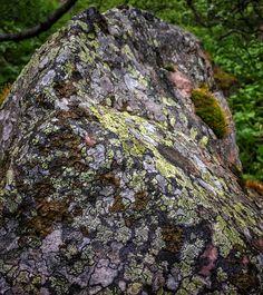 Luonnon taiteilema kivi