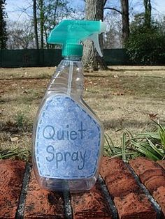 """Quiet Spray""! It is an old spray bottle (completely cleaned and dried out!). There is nothing in the bottle but it does make a little ""squirt"" sound when you pull the spray trigger. Everyone will get a squirt of ""Quiet Spray"" as we walk down the hallway."