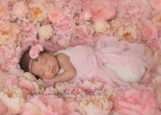 gorgeous beautiful Indian baby sleeping on pink bed of roses flowers wrap newbor. gorgeous beautiful Indian baby sleeping on pink bed of roses flowers wrap newborn Precious baby photography Angela Forke. Newborn Pictures, Baby Pictures, Infant Photos, Family Pictures, Sleeping Baby Quotes, Hindu Baby Girl Names, Fun Baby Announcement, Baby Boy Swag, Indian Baby