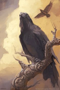 "Crows Ravens: In Norse myth, Huginn (meaning ""thought"") and Muninn (meaning ""memory"" or ""mind"") are a pair of ravens that fly all over the world, Midgard, and bring the God Odinn information. Fantasy Kunst, Fantasy Art, Arte Viking, Viking Art, Viking Woman, Fantasy Magic, Raven Art, Crows Ravens, Norse Vikings"