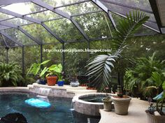 Welcome to my world of growing rare and unusual Tropical Plants: Choosing Plants For Your Lanai (plants for home indoor) Tropical Backyard Landscaping, Landscaping Around Pool, Tropical Garden Design, Florida Landscaping, Backyard Pool Designs, Tropical Plants, Backyard Ideas, Oasis Backyard, Florida Gardening