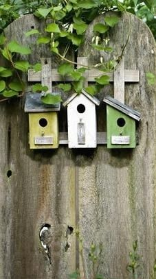 Birdhouse cluster on fence