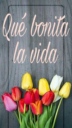 Qué bonita la vida, vivir, positividad, ser positivo