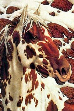 indian pony - love prints by bev doolittle and all her hidden pictures within-they are so much fun to look at Native Art, Native American Art, Bev Doolittle, Indian Horses, Horse Artwork, Horse Paintings, Hidden Pictures, Hidden Images, Painted Pony