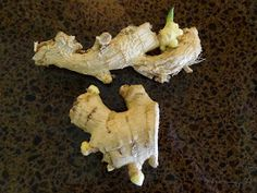Rebecca's Texas Garden: How to Plant Ginger