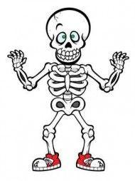 Download Cute Halloween Skeleton Drawing Art Of Cute Halloween Clipart Png Photo Png Free Png Images Skeleton Drawings Halloween Skeletons Cute Skeleton