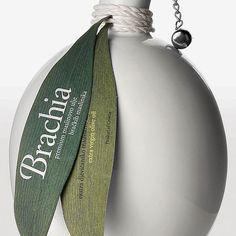 brachia-03                                                                                                                                                                                 Plus