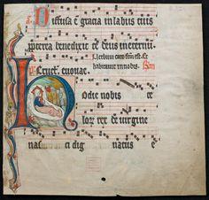 MS-D-37,24 - Fragment eines Antiphonale Published Paradiese bei Soest oder Welver (?), 14. Jh., 1. Hälfte Electronic EditionDüsseldorf : Universitäts- und Landesbibliothek, 2013 Description1 Bl. (untere Hälfte) - Pergament : Ill. ; 29,5 x 31 cm (ursprünglich 46,5 x 31 cm) Bibliographic Source Aufnahme nach: Unveröffentlichtes Manuskript ULB Düsseldorf Bibl. Reference61 MS-D-37,24 URNurn:nbn:de:hbz:061:1-322492 info