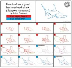 Hammerhead Shark, Sea Crafts, Map, Drawings, Location Map, Sketches, Maps, Drawing, Portrait