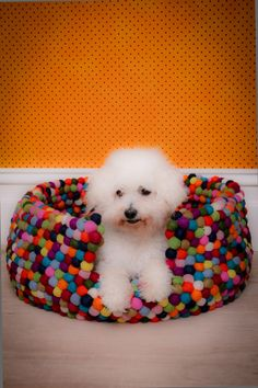 Dog Bed- do not like ball idea but could use strips of fabric and weave like rag rug.