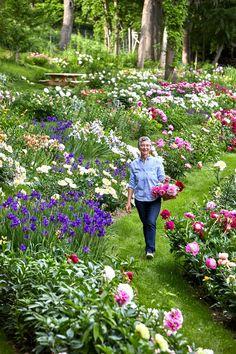 Cut Flower Garden, Flower Farm, Cut Garden, Small Flower Gardens, Flower Garden Design, Garden Edging, Sloped Garden, Most Beautiful Gardens, Peonies Garden