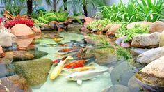 Resultado de imagem para lagos ornamentais preço