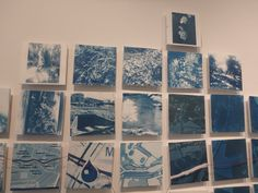 Lilly Branch Cyanotype Mural Project