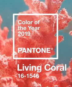 Living in coral.