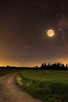 Life is Beautiful - Google+Beautiful Night