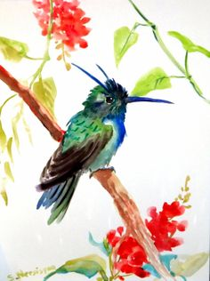Hummingbird original watercolor painting Southern by ORIGINALONLY, $24.00