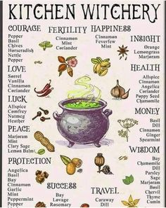 Kitchen witchery Herbs for different purposes 🌿 Wiccan Spell Book, Wiccan Witch, Spell Books, Witch Spell, Magic Herbs, Herbal Magic, Green Witchcraft, Magick Spells, Witchcraft Herbs