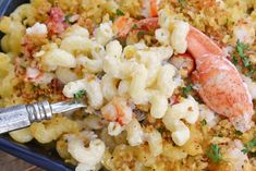 Sweet lobster, creamy cheese & a crunchy panko topping come together to make the BEST Lobster Mac and Cheese recipe! Perfect for any elegant or casual meal! #lobstermacandcheese #easylobstermacandcheese #homemademacandcheese www.savoryexperiments.com Lobster Mac N Cheese Recipe, Bacon Mac And Cheese, Best Mac And Cheese, Mac And Cheese Homemade, Baked Mac, Creamy Cheese, Cheese Recipes, Casserole Dishes, Stuffed Peppers
