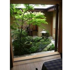 Incredible japanese garden ideas on a budget just on kennys landscaping design - INDOOR GARDEN Indoor Zen Garden, Japanese Garden Plants, Japanese Garden Landscape, Japan Garden, Japanese Garden Design, Small Gardens, Outdoor Gardens, Japanese Style House, Deco Nature