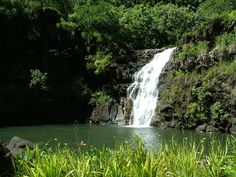 A nice mile walk through beautiful natural gardens, ending at the falls. Swimming is allowed! Oahu Vacation, Dream Vacations, Vacation Spots, Aloha Hawaii, Hawaii Travel, Island Tour, Big Island, Tour Around The World, Around The Worlds