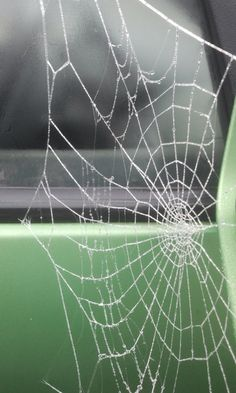 Artistic spiders at Jerpoint Park