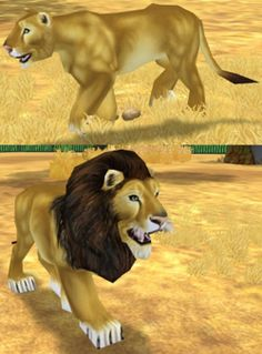250px-Lion_(Zoo_Tycoon_2).png (250×338)