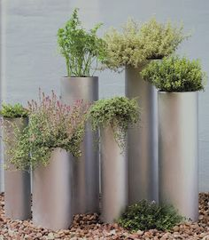 It is a garden made with plastic pipes of different diameters and cut into different heights. Just paint them with spray paint. Herbs or vegetables planted in pots that fit the pipes. First fill the pipes with stones, to support so they do not fall over