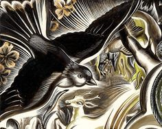The Peninsula (bird detail) by Cathie Bleck.  Inks on scratchboard.
