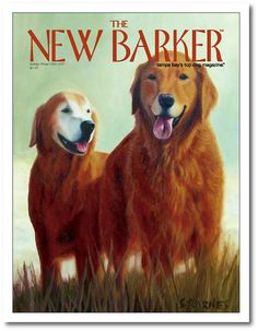 Benson & Justice by Sandra Barnes #goldenretriever #magazine #magazinecover #cover