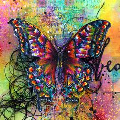 I love the colours in this butterfly by butterflyzone.org