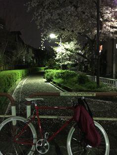 SakuraUtenji