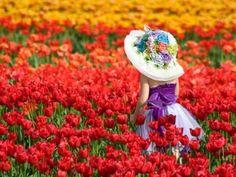 Walking in tulips