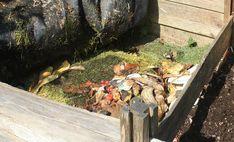 Firewood, Gardening, Texture, Crafts, Surface Finish, Woodburning, Manualidades, Lawn And Garden, Handmade Crafts