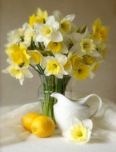 Daffodil still life - enjoy their fragrance too. Deer & squirrel proof bulbs perfect for a sunny garden!