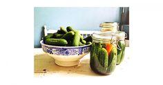 """Im aktuellen Heft schreibt Food-Bloggerin Cathrin Brandes aka """"Die Krautbraut"""" über den wiederentdeckten Küchen-Trend der Fermentation."""