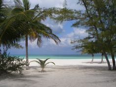 Isla de Pasion - Cozumel, Mexico